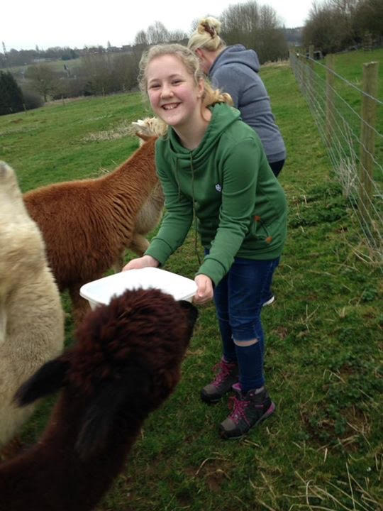 11. Lorna and Georgia feed the alpacas