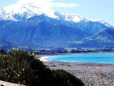 18. Kaikoura where snow top mountains meet a turquoise  pacific ocean